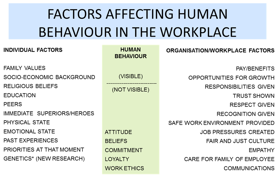 Factor Affecting Human Behaviour in a workplace